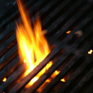 Flame_Grilled_BBQ_by_Green_Wizard